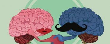 Тест: узнай, на сколько твой мозг пошлый?