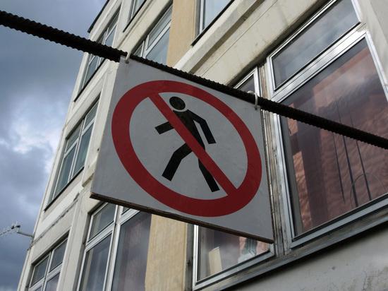 Назван диагноз детей, рухнувших без сознания в школе Псковской области